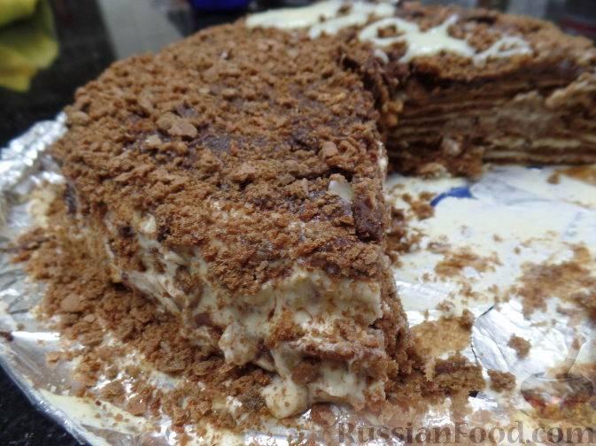 Медово-шоколадные торты: рецепты с фото и видео, как украсить медово-шоколадный торт