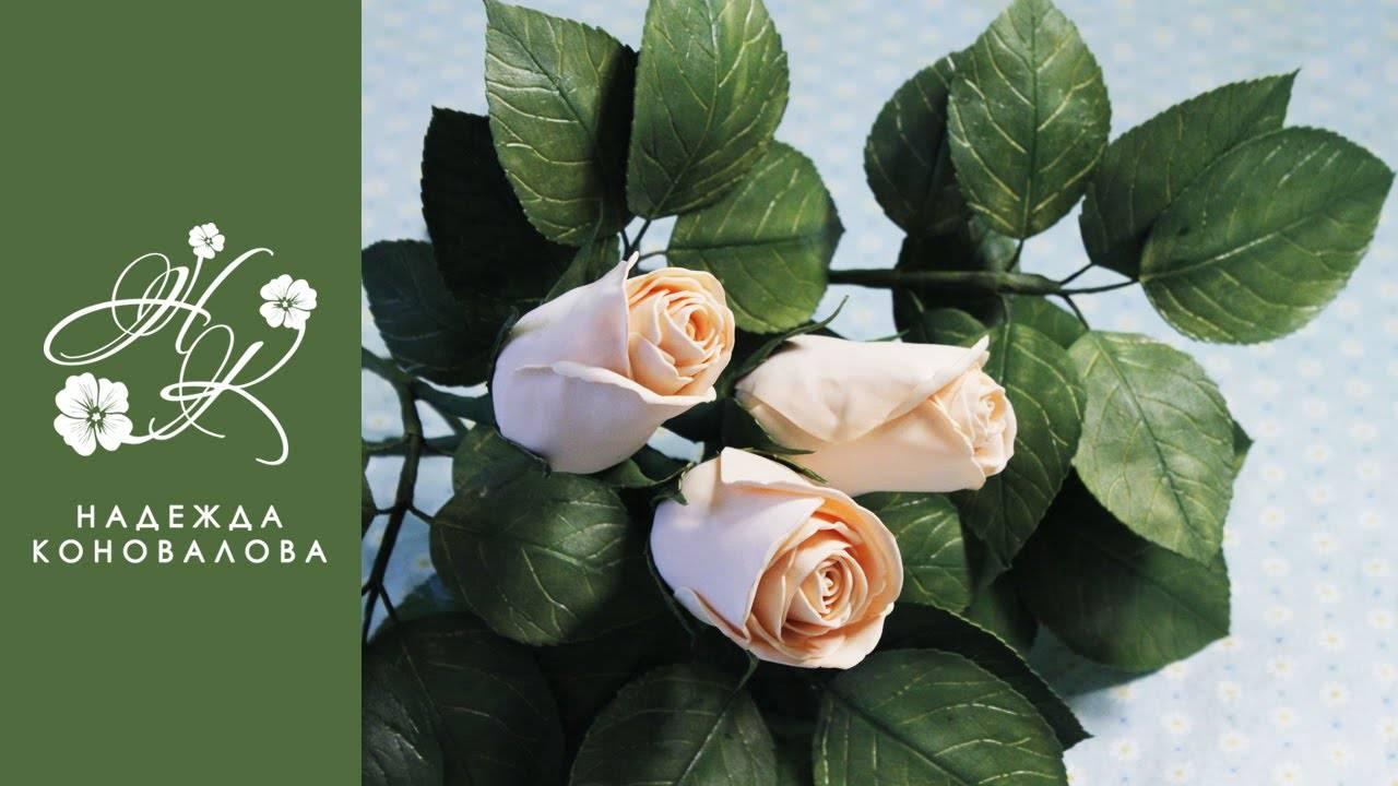 Цветы из фоамирана: мастер-классы