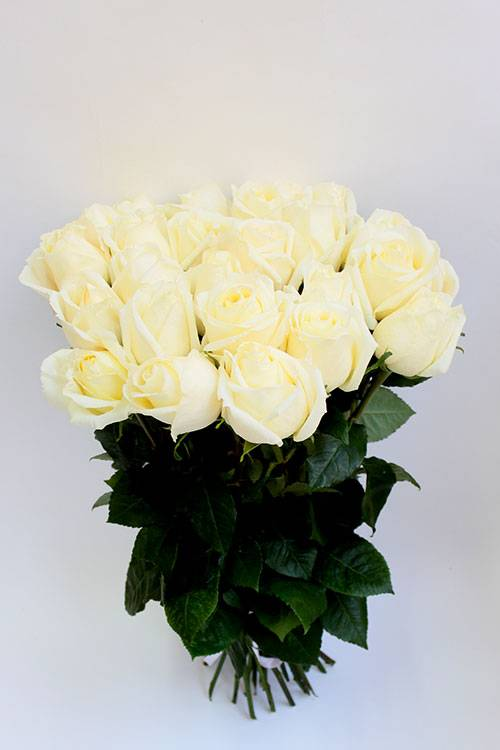 Выбираем цветы на свадьбу и годовщину по цвету и оттенку, по сорту