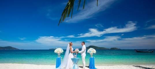 Как развлечь и удивить гостей на свадьбе?! шоу-программы и сюрпризы.