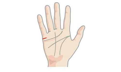 Линии брака на руке: значение, виды, фото с расшифровкой. на какой руке находится линия брака в хиромантии у мужчин и женщин: гадание по линии брака на руке. можно ли верить линиям брака на руке?