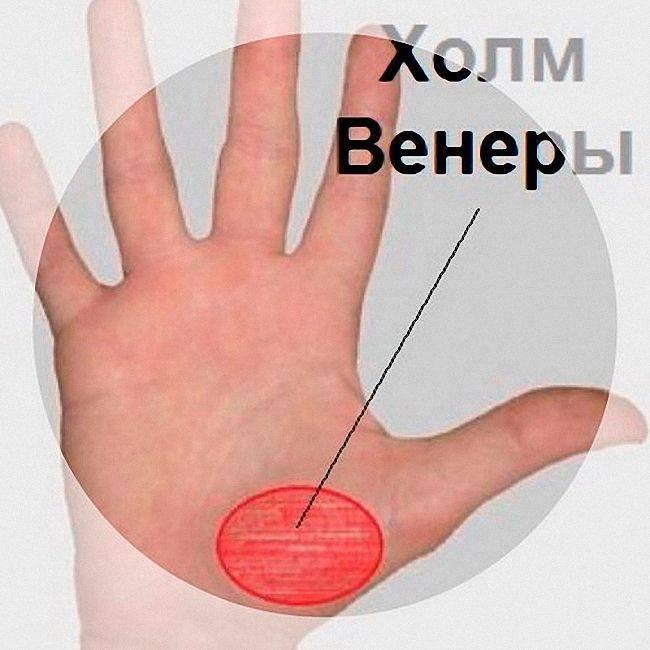 Линия брака на руке  значение, где находится на ладони, как хироманты гадают для женщины по руке