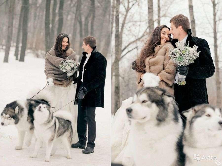 Зимняя свадебная фотосессия: необычные идеи, полезные советы, неоспоримые преимущества