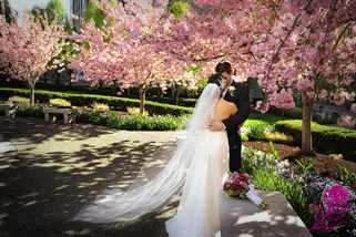 Свадьба весной: тонкости организации