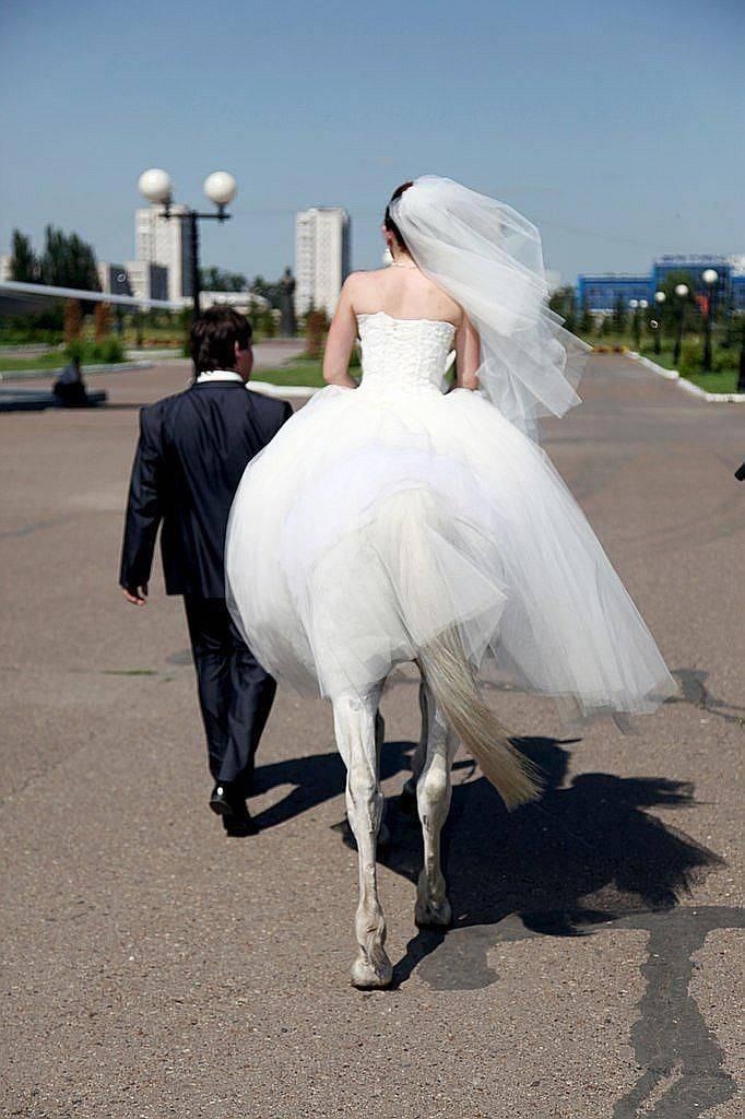 Подписи к свадебным фотографиям в альбоме: варианты прикольных заглавий к фото