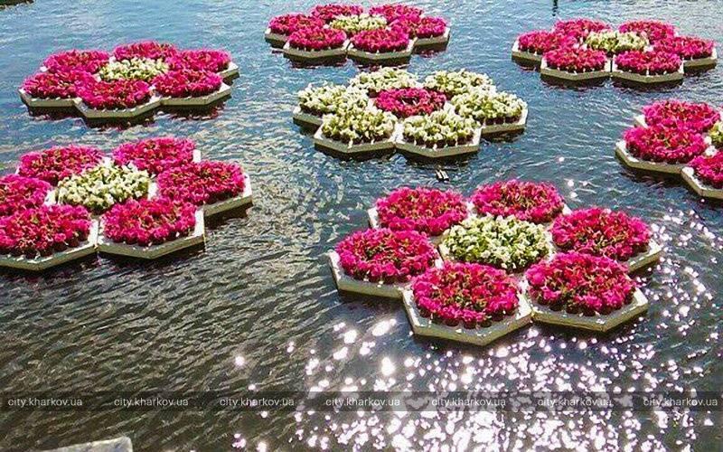 Топ идей и фото красивых букетов цветов 2020-2021: тенденции и тренды флористики | topidej.ru