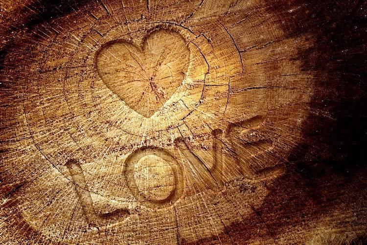 Что дарят на 5 лет свадьбы? 44 фото выбираем деревянные подарки на пять лет совместной жизни, оригинальные изделия из дерева для друзей