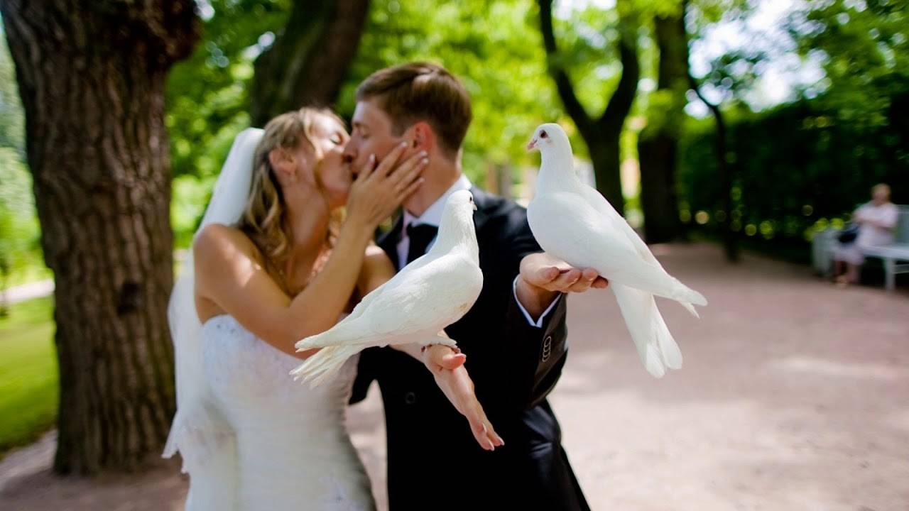 Почему на свадьбе кричат «горько»? почему так говорят и что это значит? откуда пошла традиция целоваться после слова «горько»?