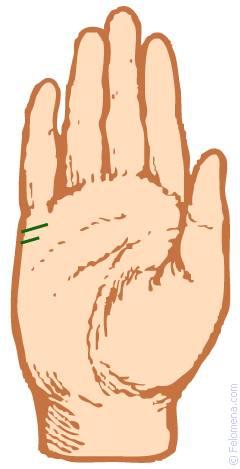 Линия брака на руке (хиромантия): значение с фото, сколько будет браков