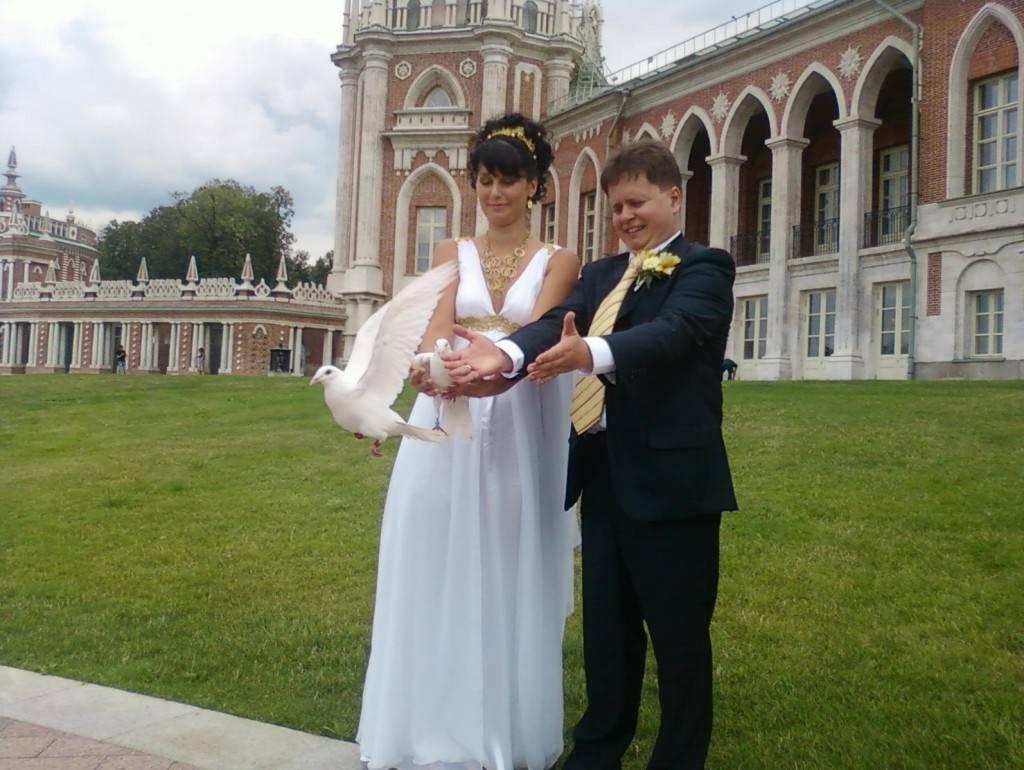 Белые голуби на свадьбу: как их выбрать, как правильно запускать, какие приметы с ними связаны