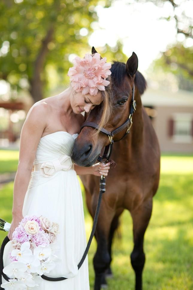 Идеи для свадебных фотосессий (85 фото): примеры для летних, зимних и осенних свадеб на природе, в ноябре или октябре с лошадьми в лесу
