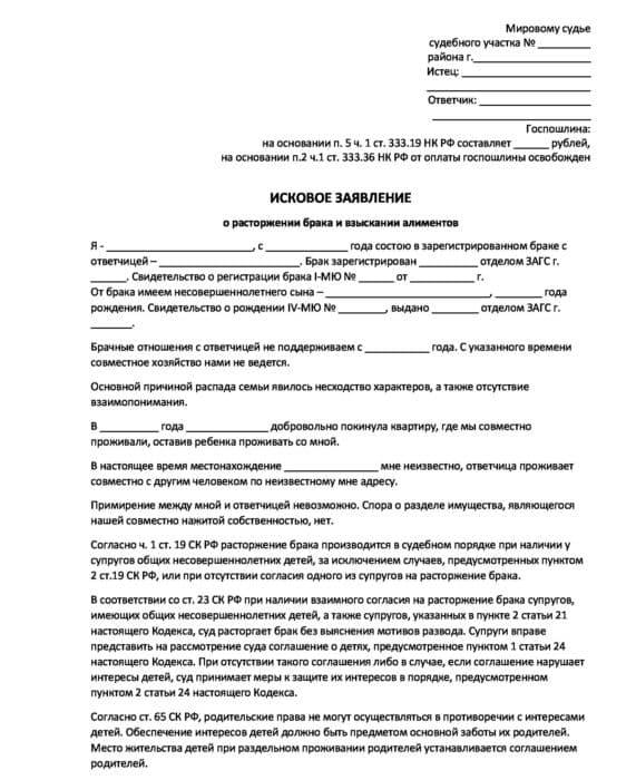 Документы для развода через загс или суд