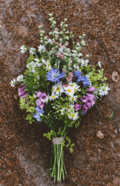 Какие цветы с какими другими цветами сочетаются?